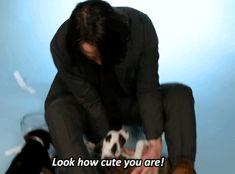 Keanu Reeves playing with puppies! This man is just so precious! Keanu Reeves Young, New Matrix, Idris Elba, Kintsugi, Jason Momoa, John Wick, Revolutionaries, Online Dating, Future Husband