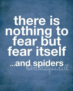 there is nothing to fear but fear itself...and spiders of course.