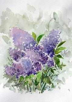 watercolor-hyacinth by ~sunaysenturk