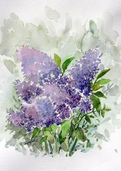 watercolor-hyacinth by ~sunaysenturk
