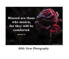Blessed are those who mourn comforting memorial photo spiritual gifts religious photo art bible verse collection negle Choice Image