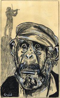 Cultural Transmission in Chimpanzees | The Primate Diaries, Scientific American Blog Network