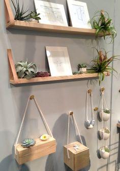 light + ladder - My shelves!!