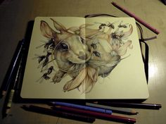 Marco Mazzoni- I love pictures of his notebook