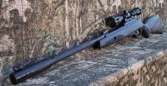 Gamo Whisper .22 cal air rifle.