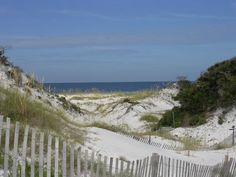 Do the Dunes get any prettier than in St. Joseph Peninsula State Park (Cape San Blas)?