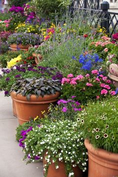 A great idea for beautifying an unsightly area - an extra wide cemented area, driveway, or a large empty rooftop? - Add over-size pots & 'planter-garden' of flowers, garden vegetables, herbs, and beautiful plants.