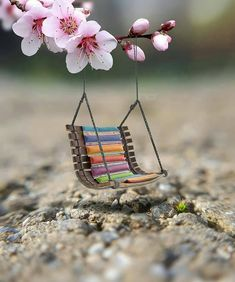 57 Good Morning Quotes and Wishes with Beautiful Images 40 Cute Wallpaper Backgrounds, Flower Wallpaper, Nature Wallpaper, Cute Wallpapers, Miniature Photography, Cute Photography, Creative Photography, Beautiful Images, Beautiful Flowers