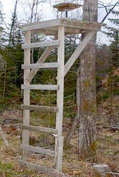 Homemade Deer Blinds Modular 4x6 Blind Texas Hunting