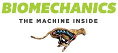 University of Waterloo Department of Kinesiology is pleased to be the knowledge partner for Biomechanics: The Machine Inside, a special exhibition at the Ontario Science Centre, opening February 8, 2017.