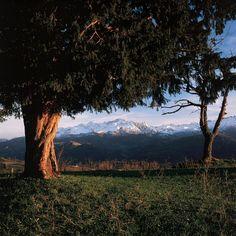 Vista de los Picos de Europa desde el Texu de Beceña