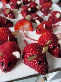 Mice Fun food Helthy snacks for kids Fruit dessert Simple Easy Quick . Strawberry Mice Fun food Helthy snacks for kids Fruit dessert Simple Easy Quick . - -Strawberry Mice Fun food Helthy snacks for kids Fruit dessert Simple Easy Quick . Helthy Snacks, Cute Food, Good Food, Funny Food, Buffet Party, Strawberry Mouse, Decoration Buffet, Dessert Simple, Simple Snacks