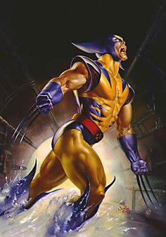 Nice Wolverine painting by Julie Bell. When I found her through Boris Vallejo I was hooked. So many years of amazing art from these two. I'd give anything to actually have one of her pieces on my wall.