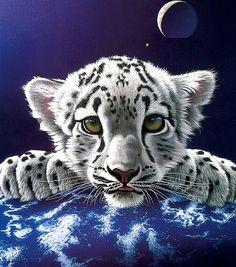 christian riese lassen tiger - Google Search