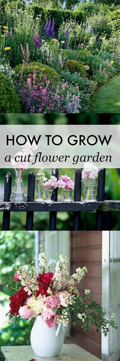Learn how to grow your own cut flower garden! Make your own beautiful flower arrangements at home all summer long. An inexpensive way to decorate! #FlowerGarden