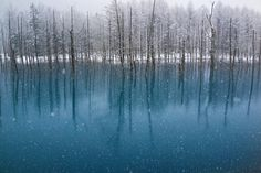 Blue Pond-The Snowfall in May Photo and caption by Kent Shiraishi  In Hokkaido, it was an uncommon thing but it snowed in May of this year.A lot of tourists dislike its snowing in the spring. However, the tourists who visited  a blue pond  enjoyed plainly.It is because they could see this beautiful snow scene.This place has a view drawing tourists from around the world. All are natures tints. Location: Biei in Hokkaido,Japan.