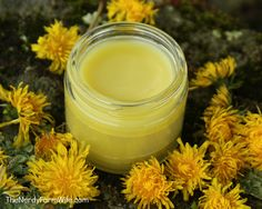 Dandelion Salve Recipe