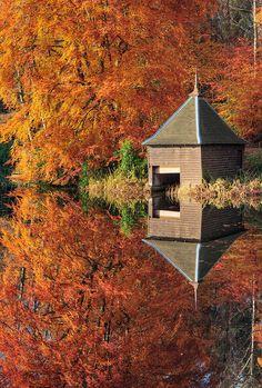 Loch Dunmore, Scotland (by Meredith Lewis)