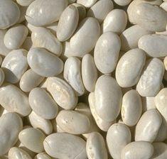 Feijão-branco emagrece e ajuda a evitar diabetes | Cura pela Natureza.com.br