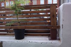 A contemporary front small garden design with Japanese Maple Shrubs DIY Tutorial - How to create a floating horizontal wood slat fence Horizontal Slat Fence, Slatted Fence Panels, Wood Slat Wall, Wood Slats, Cedar Wood Fence, Concrete Garden Bench, Wall Panel Molding, Small Front Gardens, Privacy Fence Designs