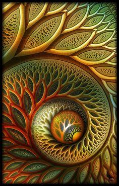 Golden Spiral- Christine Kysely