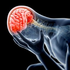 New study demonstrates zinc supplementation improves clinical outcomes from traumatic brain injury Posted on Fri, May 05, 2017