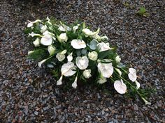 Casket Spray - Anthuriums, Calla Lilies and Avalanche Roses
