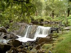 Free Things to do in Ireland