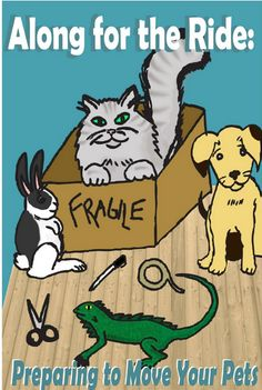 Tips for Moving With Your Pets and a Giveaway | Pawsitively Pets