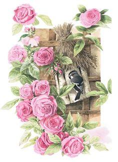 Een prachtige blanco kaart van Marjolein Bastin met roze rozen. #Hallmark #HallmarkNL #MarjoleinBastin