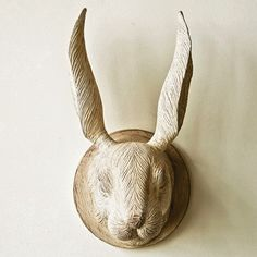 Bull Skull Wall Decor cooper bull skull wall decor | antique farmhouse | items in the
