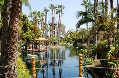 Paradise Point Resort & Spa.  San Diego Ca.
