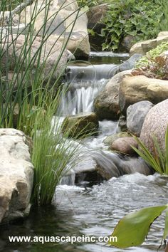 waterfalls aerate the water, providing much needed oxygen for the overall health of the ecosystem pond