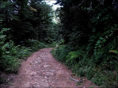 Track Sidewalk, Track, Country Roads, Runway, Side Walkway, Walkway, Truck, Running, Track And Field