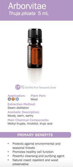 doTERRA Arborvitae Essential Oil