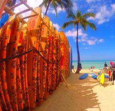 waikiki surfboard rentals Hawaii Activities, Waikiki Beach, Surfboard, Fair Grounds, Fun, Travel, Viajes, Trips, Tourism