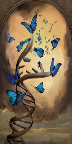 bioshock 2 art butterflies and dna. sofia lamb