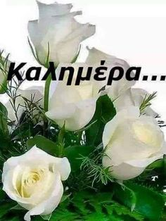 Beautiful Pink Roses, Greek Quotes, Romantic Quotes, Mom And Dad, Good Morning, Beautiful Pictures, Messages, Mornings, Night