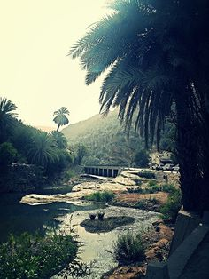 Paradijsvallei #Imouzzer #Berber #Villages #Morocco #Palms