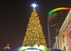 World above christmas tree Christmas in Bangkok Thailand and the annual Christmas Light Festival. For more on Thailand and travel in Southeast Asia check our travel blog: http://live-less-ordinary.com/