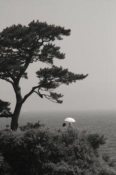 We will go.. Yokosuka, Japan ✌