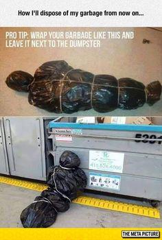 Garbage Disposal Tip