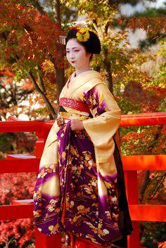 floating-flowers: okiya: Maiko Kotomi (Gion Higashi) this hiki omg