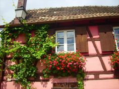 pastel pink house in Turckheim, Alsace