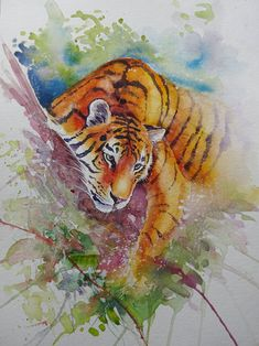 Watercolour painting - Sunday Morning Tiger by WatercoloursForSale on Etsy Watercolor Tiger, Tiger Painting, Watercolor Animals, Watercolour Painting, Watercolours, Watercolor Ideas, Watercolor Pencils, Painting Art, Oil Painting For Sale