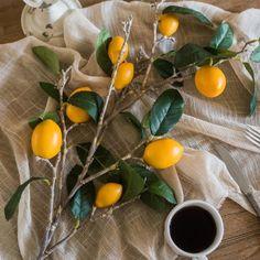 "Artificial Lemon Stem 39"" Tall – RusticReach Yellow Plants, Jade Plants, Persimmon Fruit Tree, Metal Hanging Planters, Fruit Wedding, Wedding Arrangements, Artificial Plants, Fruits And Vegetables, Tree Branches"