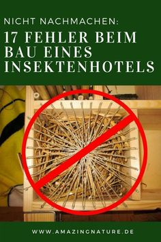 17 Fehler beim Bau eines Insektenhotels, die man vermeiden sollte. Wer sich selbst ein DIY Bienenhotel baut der kann leicht in die Fehlerfalle tappen. Wir zeigen die häufigsten Fehler, die beim Insektenhotel bauen gemacht werden