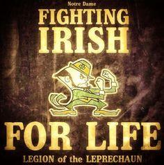 Go Irish. College Football Teams, Notre Dame Football, Football And Basketball, Noter Dame, Notre Dame Irish, Go Irish, Fighting Irish, College Fun, Leprechaun