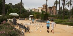 Parques de Sevilla: Parque de Maria Luísa   #Sevillaconlospeques #Sevilla #Planesconniños #Parquesdesevilla   #niños #actividadesconniños  ✿✿ Sevilla con los peques ✿✿ más planes  con niños en Sevilla https://www.sevillaconlospeques.com ✿✿