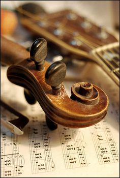 127 Best music images | Music instruments, Sheet Music